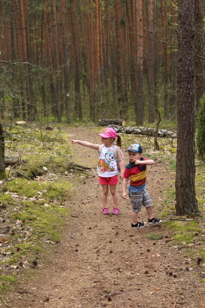 przyroda wspiera rozwój dziecka