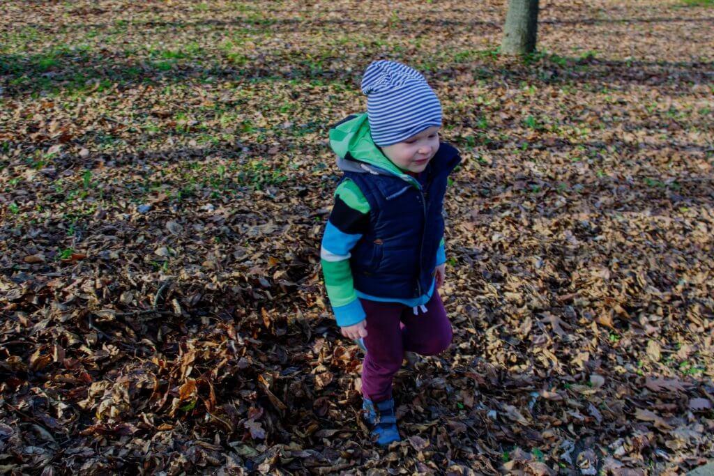jesień w parku zabawa