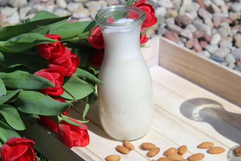 jak zrobić mleko roślinne