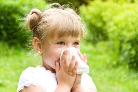alergie na pyłki