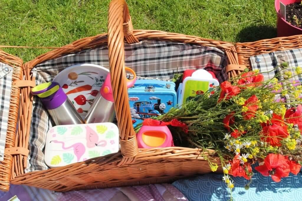 jak zorganizować piknik