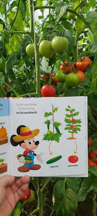 książka o jedzeniu dla dzieci